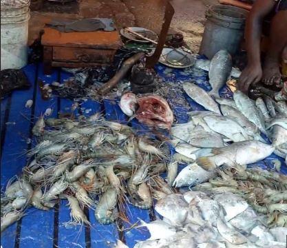 গুয়াহাটির মাছ বাজার প্ৰায় শুনশান