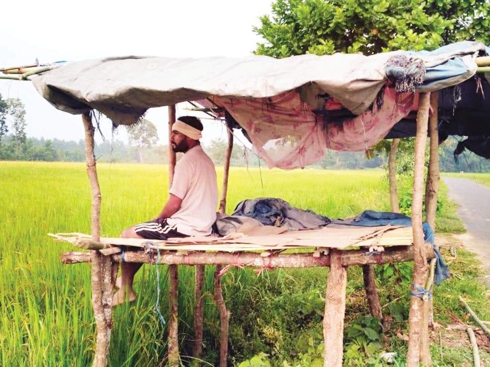 রানি অঞ্চলে বুনো হাতির উপদ্ৰব,তটস্থ কৃষকরা