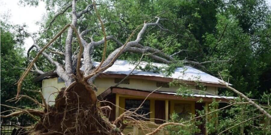 কামরূপ জেলার বকোতে ঘূর্ণি ঝড়ের তাণ্ডব