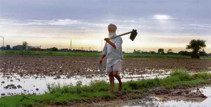 পঞ্জাবের ১০ জেলায় ২০ বছরের মধ্যে ভূগর্ভের জল শূন্য হয়ে যাবেঃ রিপোর্ট
